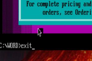 exitdosbox